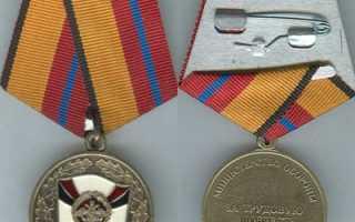 Трудовая доблесть россии медаль