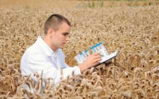 Программы для молодых специалистов в сельской местности