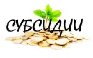 Субсидии балаково график работы