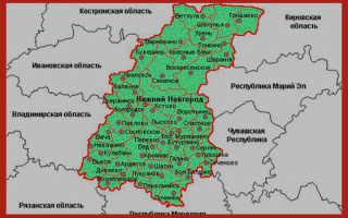 Социальные льготы в нижегородской области