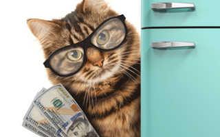 Проценты по ипотеке возврат ндфл