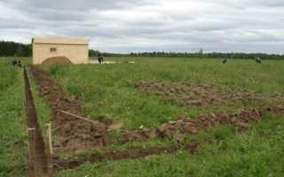 Положено ли земельный участок ветеранам боевых действий
